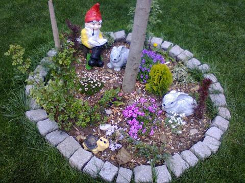 Kreativnost podmladka u uređenju zelenih površina